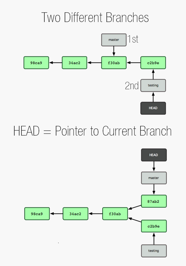 Head points to currently loaded branch