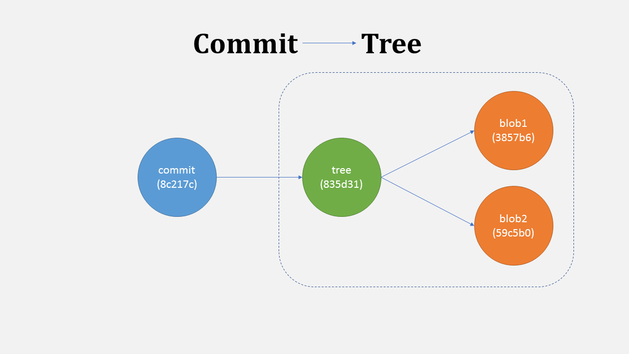 A commit points to tree